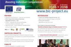 Pannello Progetto BIC